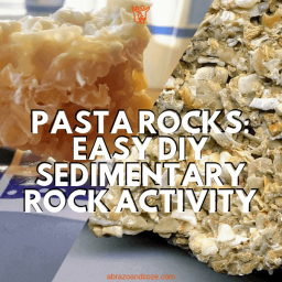 Coquina rock and pasta rock coquina style. Pasta Rocks: Easy DIY Sedimentary Rock Activity.